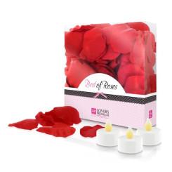 Roosi õielehed punane LoversPremium E22002 (100 uds)