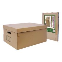 Mitmeotstarbeline Karp