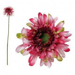 Декоративный цветок Хризантема 114530