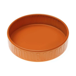 Seebialus Oranž Ümmargune Fusion