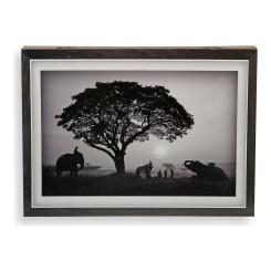 Крышки бухгалтер Safari Деревянный MDF